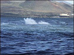Землетрясения на острове Иерро